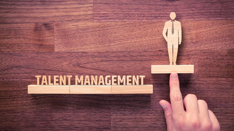 【やさしく解説】タレントマネジメントとは? / 背景から実践方法までご紹介